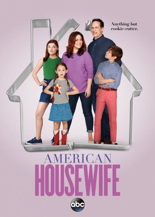 Американська домогосподарка