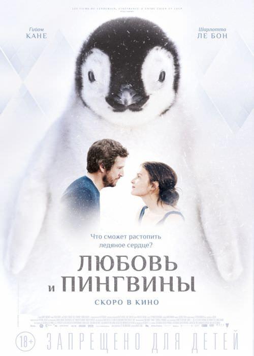 Любов і пінгвіни